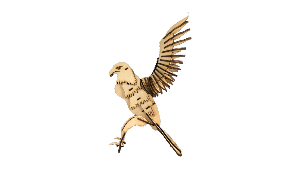 LaserBox Creation — Eagle