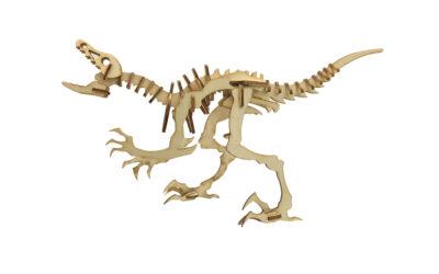 LaserBox Creation — Deinonychus